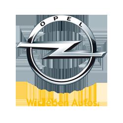 Esapament Opel