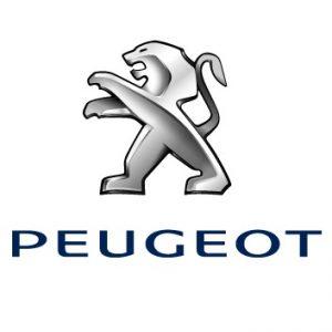 Esapament Peugeot